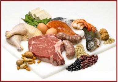proteini u ishrani