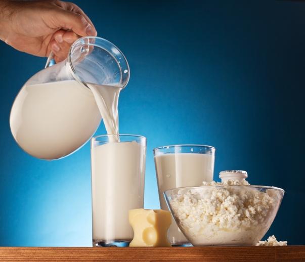 mlecni proizvodi