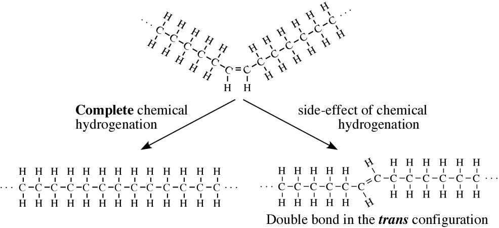 hidrogenizacija