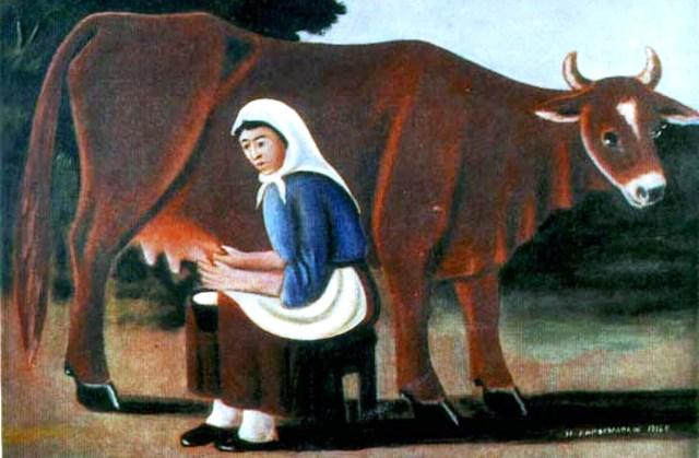 zena koja muze kravu