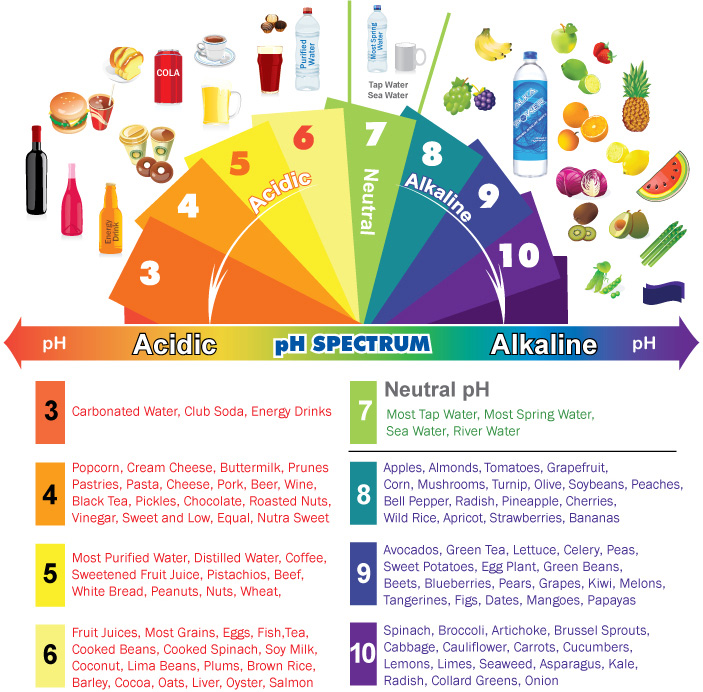 Spektar alkalnosti namirnica