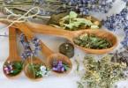 biljke smiruju