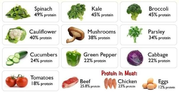 vege proteini izvori