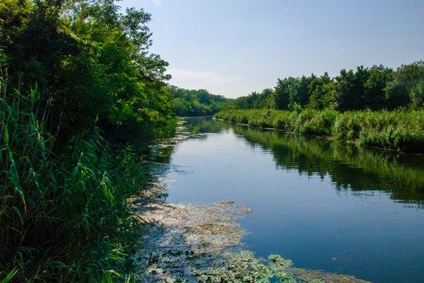 Gornje Podunavlje 1