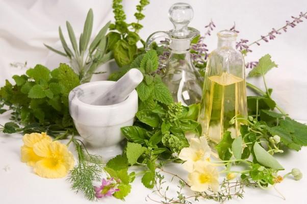 biljke preparati za mrsavljenje