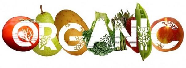 3-organska hrana 4